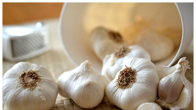 Do you know the medicinal properties of garlic